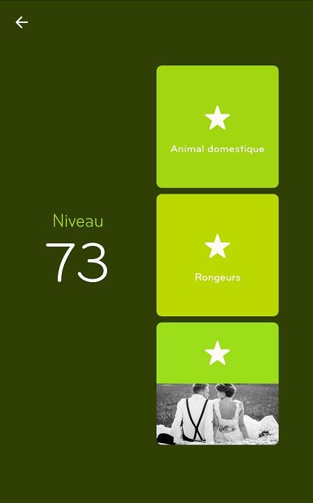 Solutions Niveau 73 - 94%