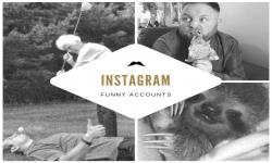 Articles - Humour : 5 comptes Instagram à suivre absolument !