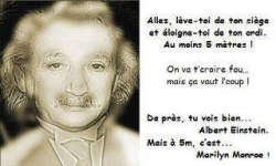 Images - Illusion d'optique : Albert Einstein ou Marylin Monroe ?