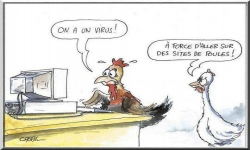 A force d'aller sur des sites de poules...