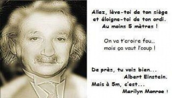 Illusion d'optique : Albert Einstein ou Marylin Monroe ?
