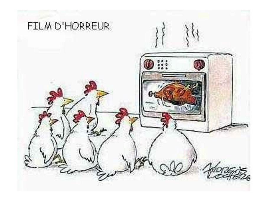 Film d'horreur pour les poules