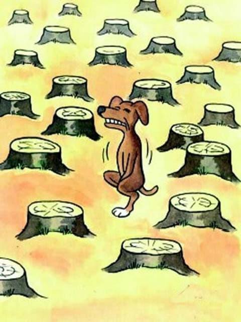 Un chien qui a des envies au milieu des arbres