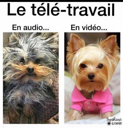 Télétravail : différences entre audio et vidéo