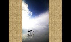 Diaporamas - Magnifiques photos de personnes