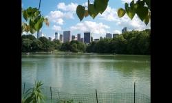 Diaporamas PPS - Le Central Park à New York