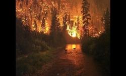 Diaporamas PPS - Les pompiers du ciel et leurs Canadairs