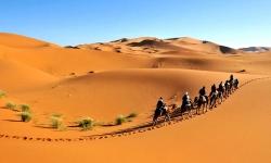 Diaporamas PPS - La fascination du désert