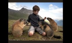 Diaporamas - Mowgly, l'enfant qui sait parler aux marmottes
