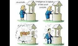Diaporamas PPS - Humour en images