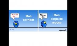 Diaporamas PPS - Cours de français avec un piaf