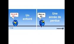 Diaporamas - Cours de français avec un piaf