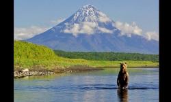 Diaporamas - Voyage au Kamtchatka, au Pays des Ours