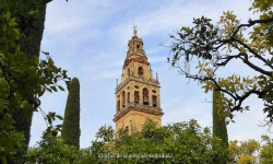 Diaporamas PPS - Découverte de l'Andalousie