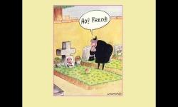 Diaporamas PPS - Humour en images 3