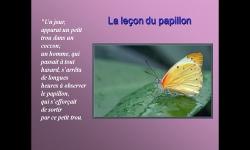 Diaporamas PPS - La leçon du papillon