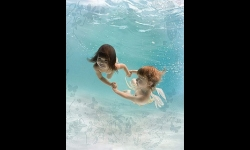 Diaporamas PPS - Oeuvres sous-marines de Zena Holloway