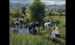 Diaporamas PPS - Peintures de Robert Duncan