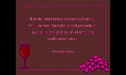 Diaporamas PPS - Bon vin ne saurait mentir