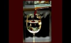 Diaporamas - Bon vin ne saurait mentir