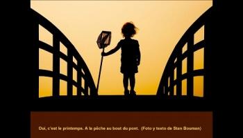 Concours de photographies 2010