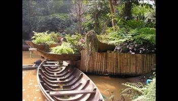 Douceur des jardins thaïlandais