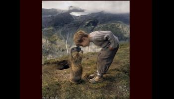 Mowgly, l'enfant qui sait parler aux marmottes