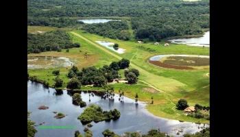 Diaporamas PPS - Le Pantanal