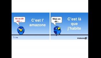 Cours de français avec un piaf