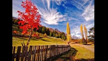 Diapositivas PPS - El otoño en la Patagonia argentina