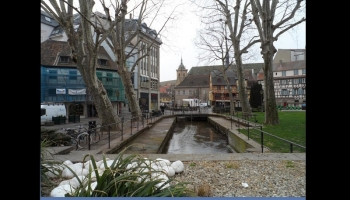 Visite de Colmar et du Musée Unterlinden