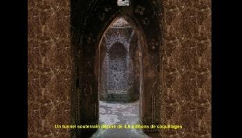 Diaporamas PPS - La mystérieuse grotte aux coquillages de Margate