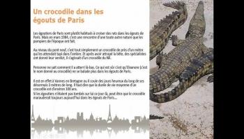 100 anecdotes insolites sur Paris