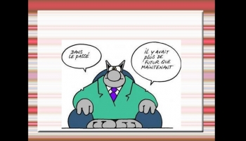 Humour Le Chat